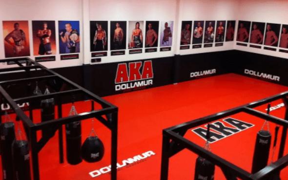 AKA (American Kickboxing Academy)