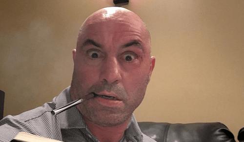 Джо Роган: «Тарвердян сотворил чудо с боксом Раузи»