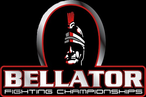4920160d9dfb8076a85515d4b871c7ea - Летом Bellator может запустить турнир тяжеловесов