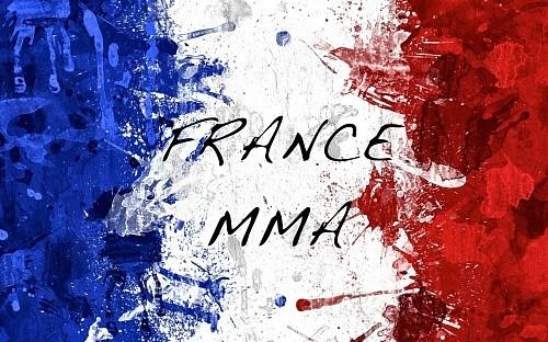 4dbc97141307f90cedc9cb73b1046a99 - Во Франции запретили ММА