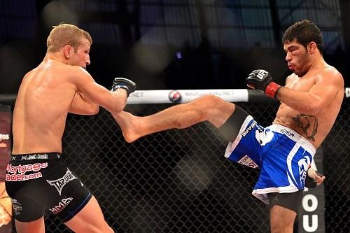 Реванш Диллашоу и Ассунсао планируется провести на UFC 200