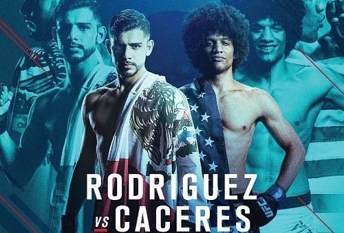 Результаты UFC Fight Night 92: Родригес побеждает Касереса